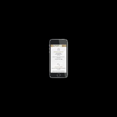 company database screenshot (mobile)